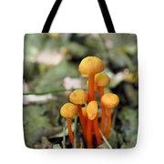 Tiny Orange Mushrooms Tote Bag