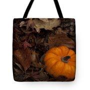 Tiny Pumpkin Tote Bag