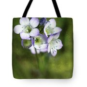 Tiny Purple And Blue Tote Bag