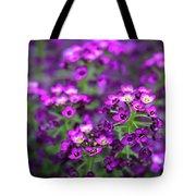 Tiny Purple Flowers Tote Bag