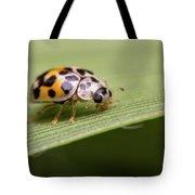 Tiny Spots Tote Bag