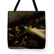 Tiny Succulent Tote Bag