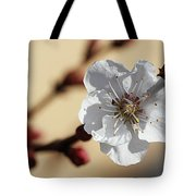 Tiny White Flower Tote Bag