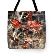 Tired Leaves Tote Bag