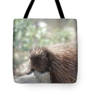 Tired Porcupine On A Fallen Log Tote Bag