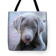 Tired Puppy Tote Bag