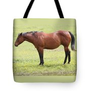 Tired Horse Tote Bag