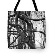 Tit Bird Perching On Tree Tote Bag