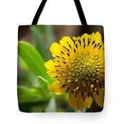 Tithonia Diversifolia Tote Bag by Michael Tesar