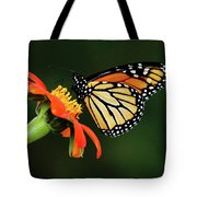 Tithonia Loving Monarch Tote Bag