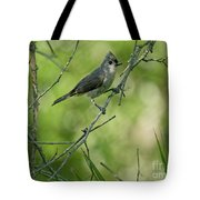 Titmouse In The Brush Tote Bag