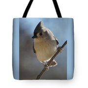 Titmouse Pause Tote Bag