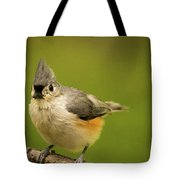 Titmouse Ready To Jump And Fly Tote Bag