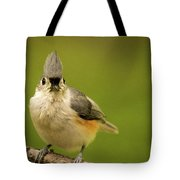 Titmouse Says Here Is Looking At You Tote Bag