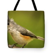 Titmouse With Bad Hairdo 2 Tote Bag