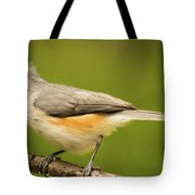 Titmouse With Bad Hairdo 3 Tote Bag