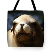 To Bask In Royal Sun Tote Bag