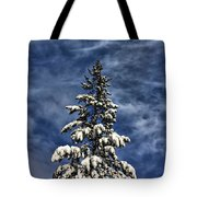 To Blue Horizons Tote Bag