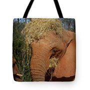 To Go Please Tote Bag