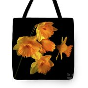To Hold In Your Heart Tote Bag