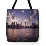 To Reign In Dusk Tote Bag