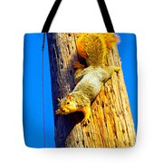 To Squirrels And To Me Tote Bag by Guy Ricketts