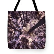 To The Sky Tote Bag