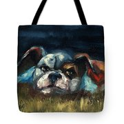 To Tired To Chase Cats Tote Bag