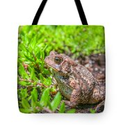 Toad In The Grass Tote Bag
