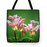 Toad Lilies Tote Bag