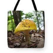 Toad Stool IIi Tote Bag