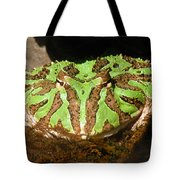 Toad With Green Stripes Tote Bag