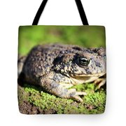 Toad You So Tote Bag