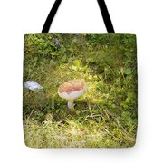 Toadstool Grows On A Forest Floor. Tote Bag