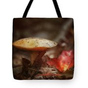 Toasty Glow Tote Bag