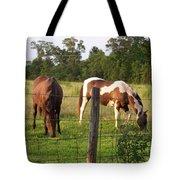 Tobiano And Bay Horses Tote Bag