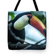 Toco Tuoucan Tote Bag