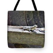 Todays Art 1067 Tote Bag