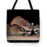 Todays Art 1073 Tote Bag