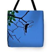 Todays Art 1238 Tote Bag