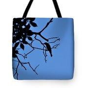 Todays Art 1239 Tote Bag