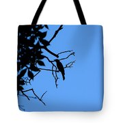 Todays Art 1240 Tote Bag