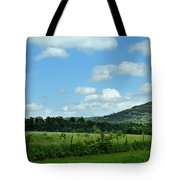 Todays Art 1398 Tote Bag