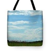 Todays Art 1405 Tote Bag