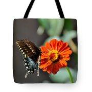 Todays Art 1410 Tote Bag