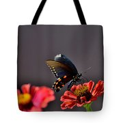 Todays Art 1416 Tote Bag