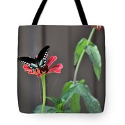 Todays Art 1422 Tote Bag