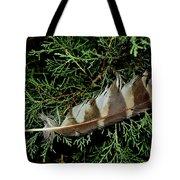 Todays Art 1589 Tote Bag
