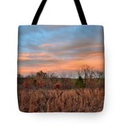 Todays Art 2473 Tote Bag