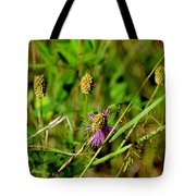Todays Art 831 Tote Bag